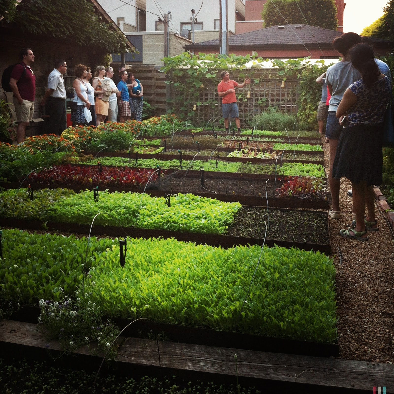 image from Planning your community garden plot